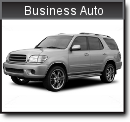 Commercial Auto Business